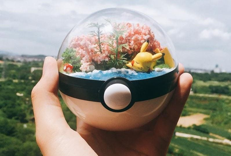 Pokemon Terrarium collectibles