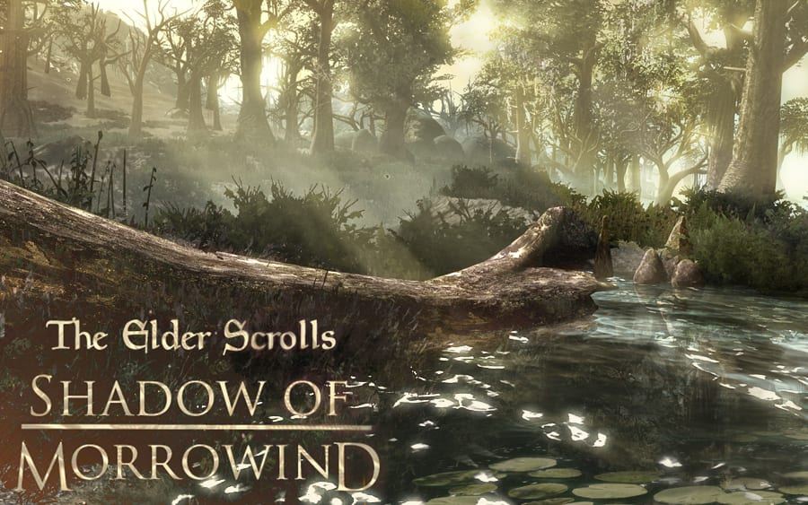 Skyrim: Shadow Of Morrowind Is An Impressive New Experience