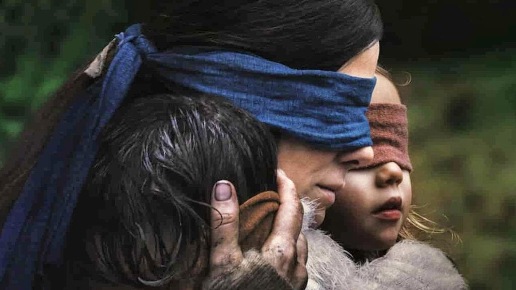 Netflix Warns Fans Of Real Life 'Bird Box' Challenge (VIDEO)